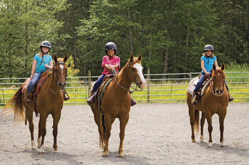 Helmets are important for understanding Safety in the Horse-Human Relationship