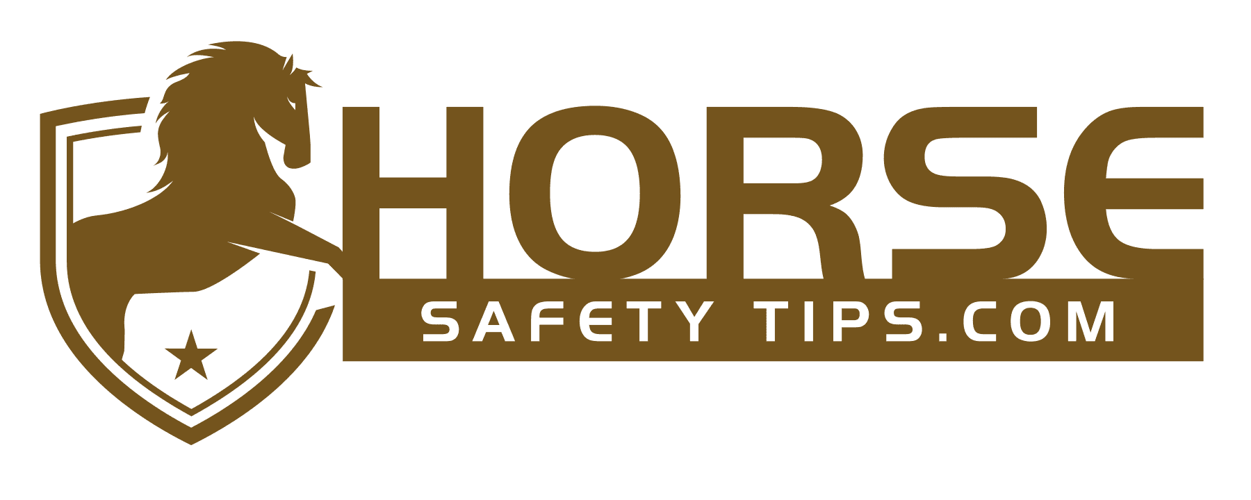 Horse Safety Tips Blog