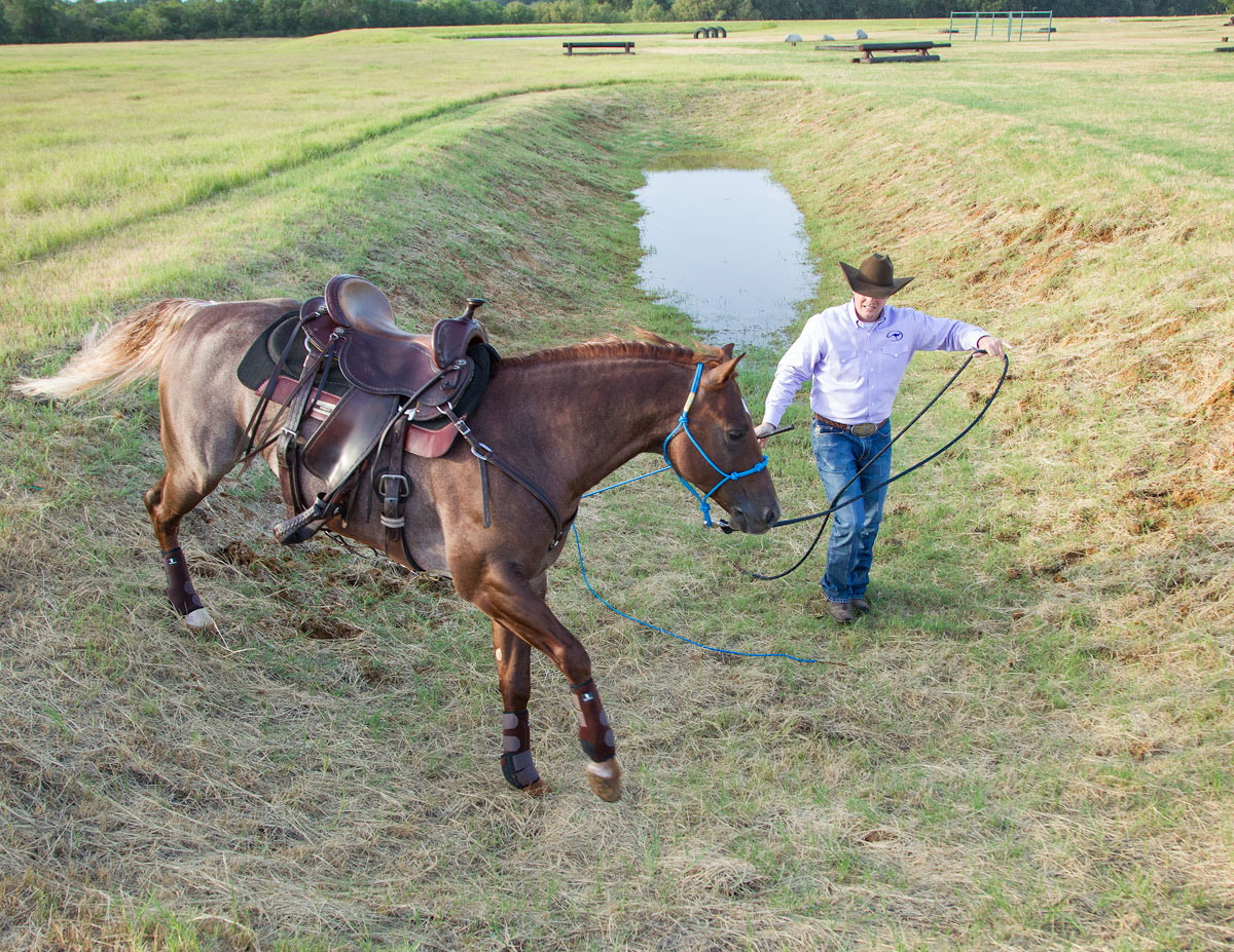 Practice groundwork helps prepare you and your horse